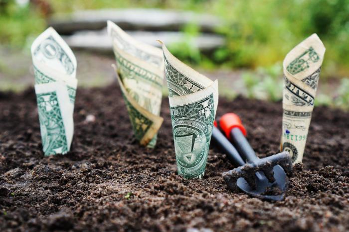 Geld vermehrt sich nicht!